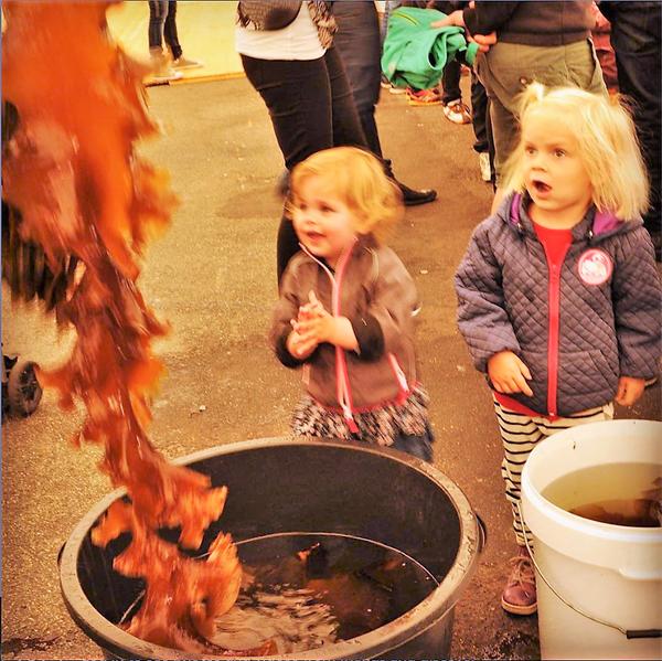 skaldyrsfestival1_red